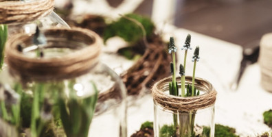 Living green with these 11 handy tips