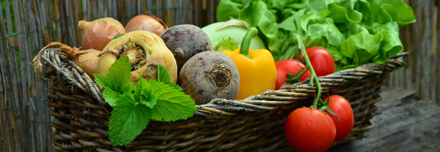 Seasonal Fruit and Vegetables - Autumn/Winter